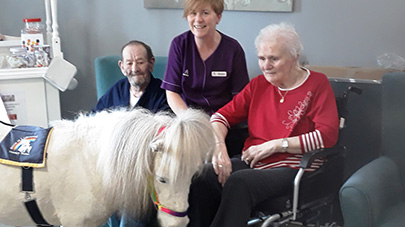 Oakwood Grange bring in pony to make former horserider's day
